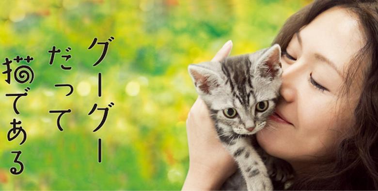 映画『グーグーだって猫である』あらすじ・ネタバレ感想!