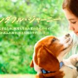 映画『僕のワンダフル・ジャーニー』あらすじ・ネタバレ感想!