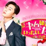 韓国ドラマ『キム秘書はいったい、なぜ?』動画フル無料視聴!