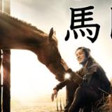 韓国ドラマ『馬医』キャスト・あらすじ・ネタバレ感想・無料動画の情報まとめ!
