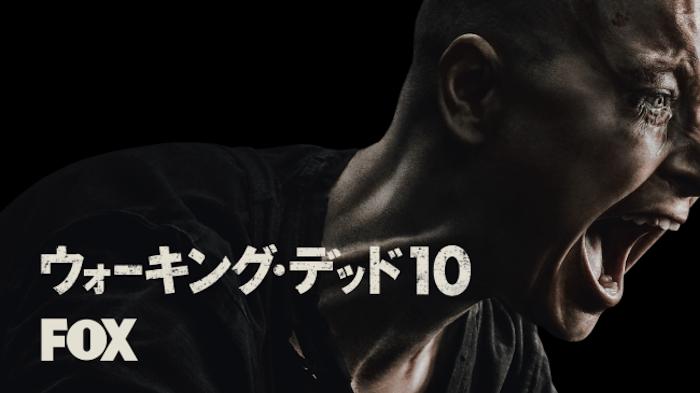 海外ドラマ『ウォーキング・デッド シーズン10』動画フル無料視聴!配信サービス11種類のおすすめはどれ?