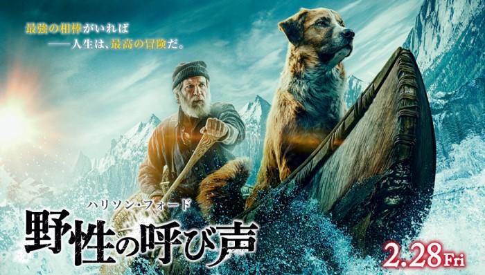 『野性の呼び声』あらすじ・ネタバレ感想!名作冒険小説の完全実写化!人間と犬の絆を描いた、奇跡と感動の物語