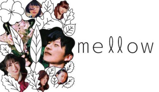 『mellow』あらすじ・ネタバレ感想!今泉力哉監督×田中圭主演!花屋mellowを中心に交差する片想いたちの物語