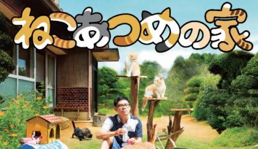 『ねこあつめの家』動画フル無料視聴!人気ゲームアプリが映画化!猫たちと過ごす癒しライフを見る