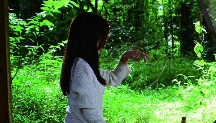 『空蝉の森』の予告編・追加場面スチール及び、「碧いうさぎ」以来25年ぶりのタッグとなる大黒摩季のコメント解禁!