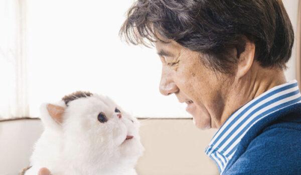 『おじさまと猫』