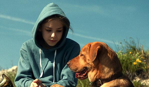 『ホワイト・ゴッド 少女と犬の狂詩曲(ラプソディ)』