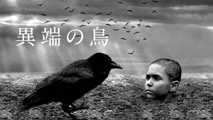 『異端の鳥』
