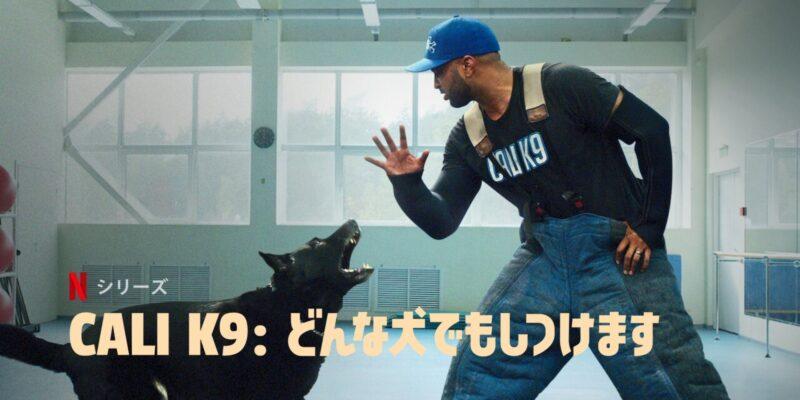 『CALI K9:どんな犬でもしつけます』解説・感想!ドッグトレーナー、ジャス・レベレットのワンちゃんたちを幸せにするトレーニング術