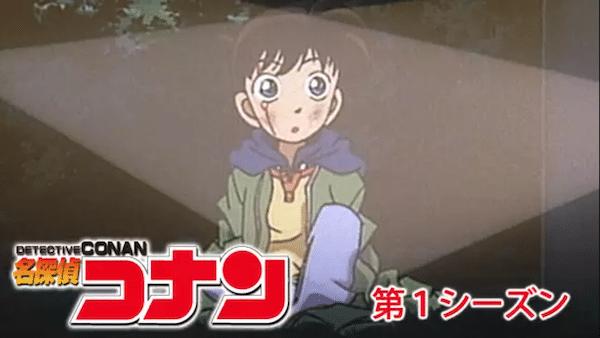 アニメ映画『名探偵コナン 緋色の不在証明』を見たい人におすすめの関連作品