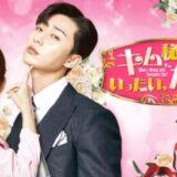 韓国ドラマ『キム秘書はいったい、なぜ?』動画